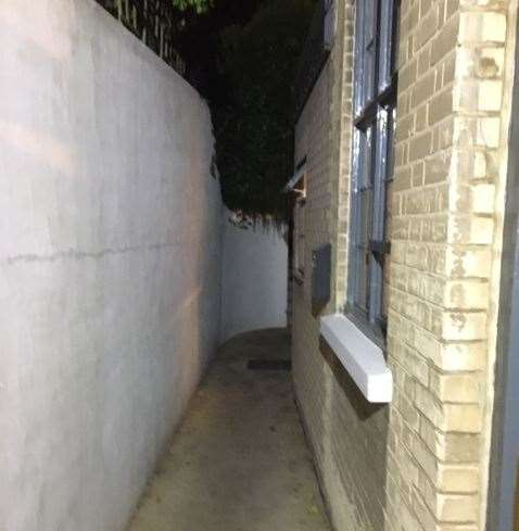 This is the alleyway at the back which leads to the rear garden – I did venture along it but it became too dark even for me