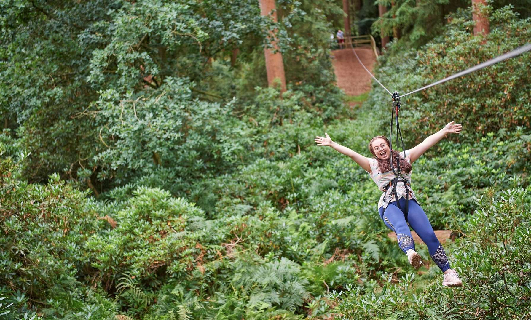 There's treetop adventure to be had now