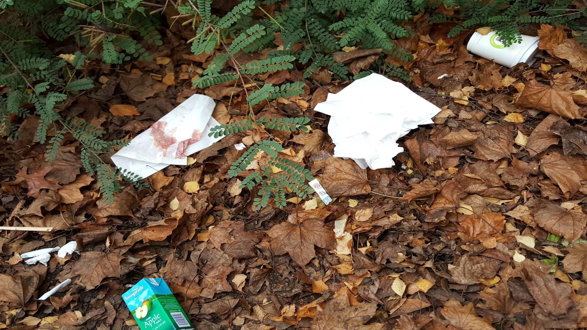 Rubbish strewn around Memorial Gardens