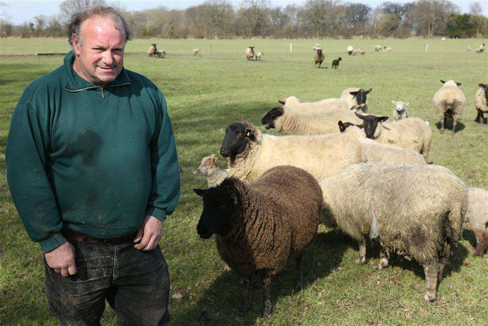 Farmer Roger Cooper in his field where sheep have been attacked for a second time