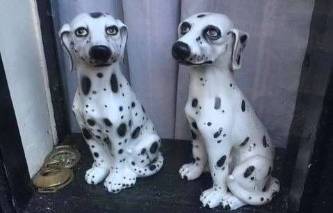 Just some of the spotted dogs you'll spy if you visit