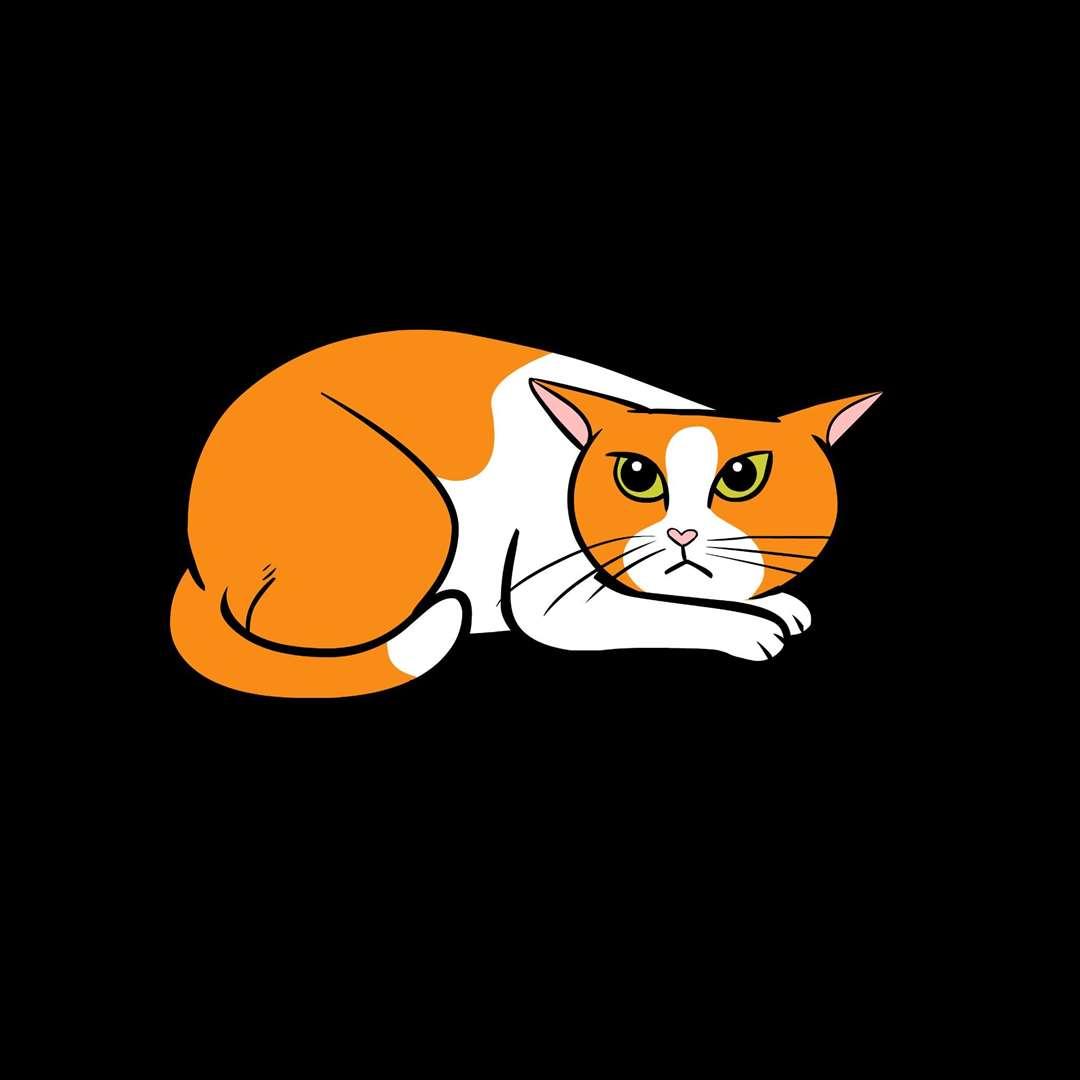 An unhappy cat.  Photo: Lili Chin
