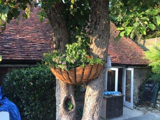 You can clearly see a good deal of thought has gone into doing up the garden area – this hanging basket, mounted on two trunks, is great
