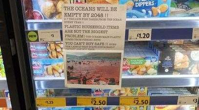 One of the posters found in a supermarket's frozen food aisle