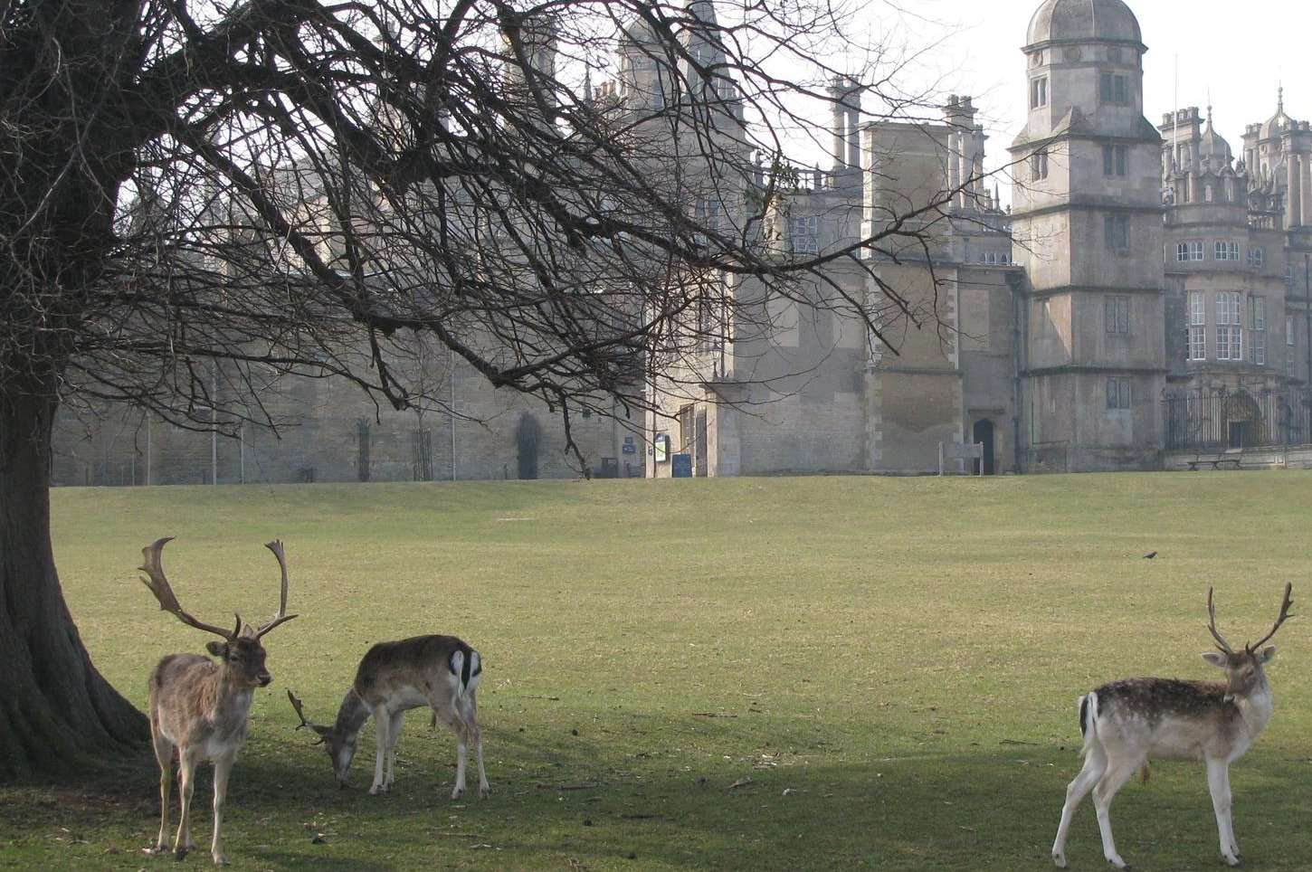 Beautiful Burghley