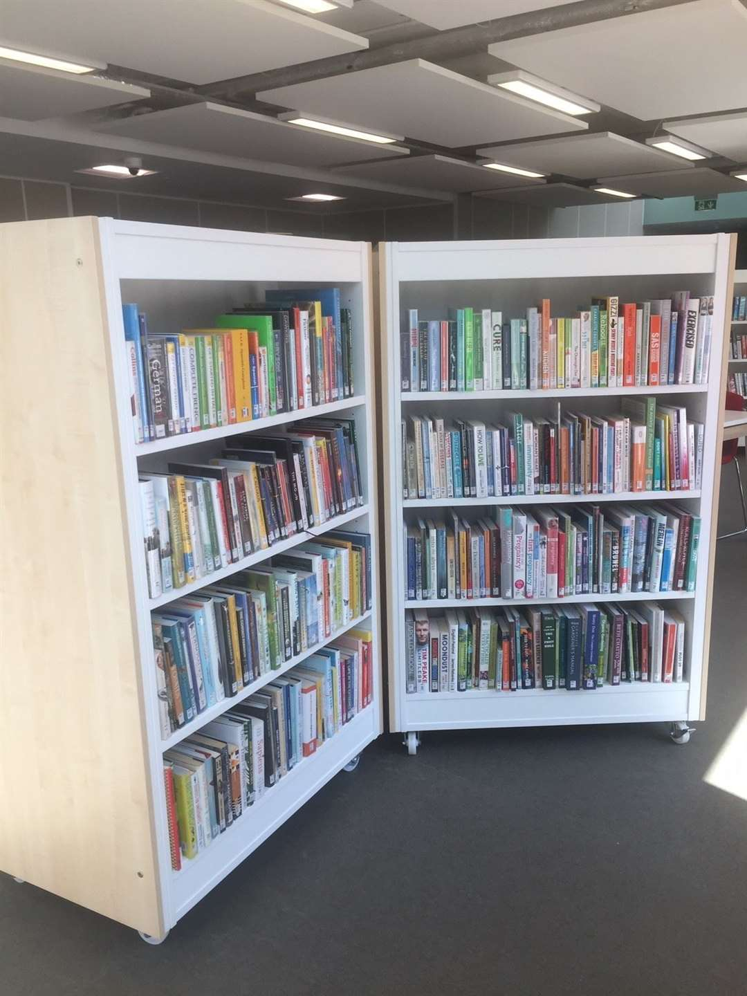 The library has hundreds of new books
