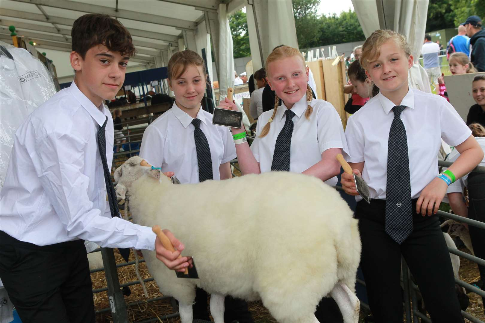 Young farmers from Sittingbourne school Westlands walked off with a string of awards at the Kent County Show. They have their own farm at the school in Westlands Avenue. Picture: John Westhrop. (13505735)