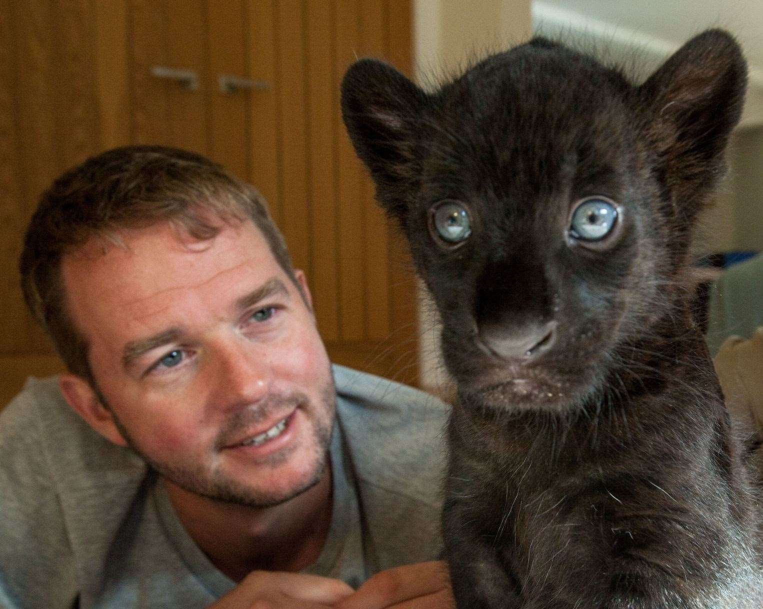 Giles Clark with Maya the jaguar on the Big Cats About The House programme. Picture: BBC
