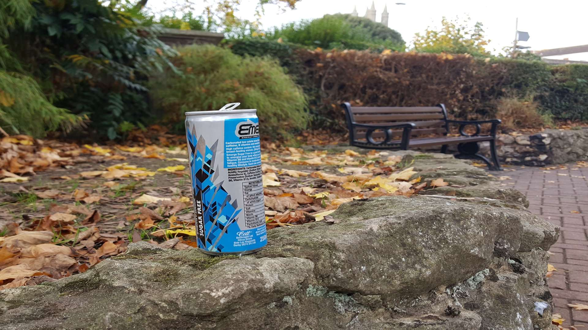 A drinks can left in the park