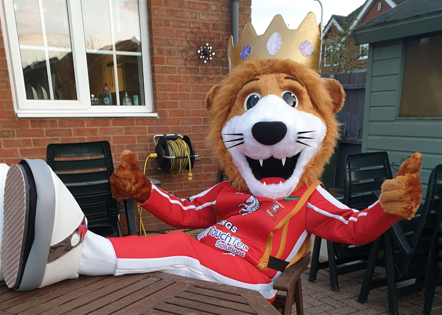 Roary the Lion is the new Kent Kings mascot