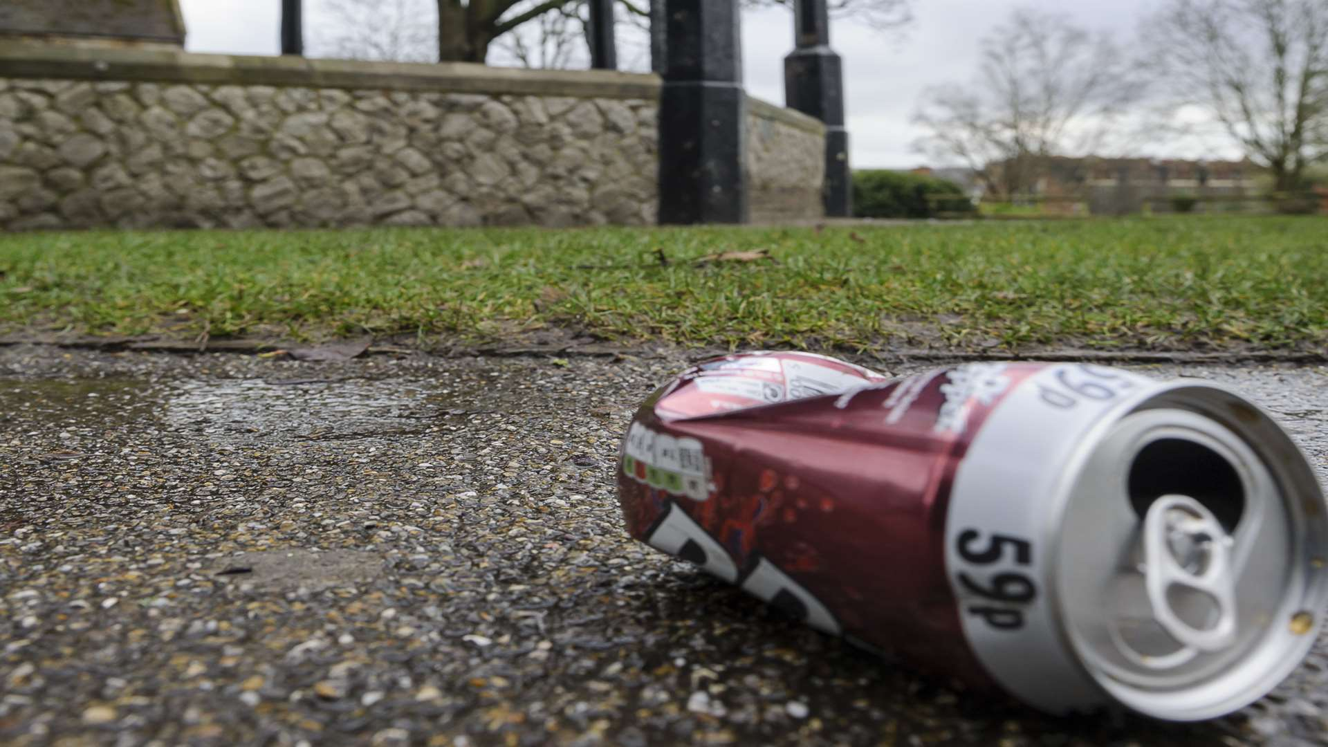 Litter in Brenchley Gardens